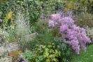 Chopin-Garten