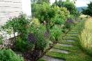 Rosen mit Rasenweg als Begrenzung zur Blumenwiese