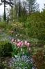 Tulpengruppen