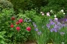 Farbe im Mai
